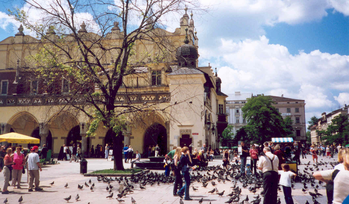 scenic photo of town square with birds and people