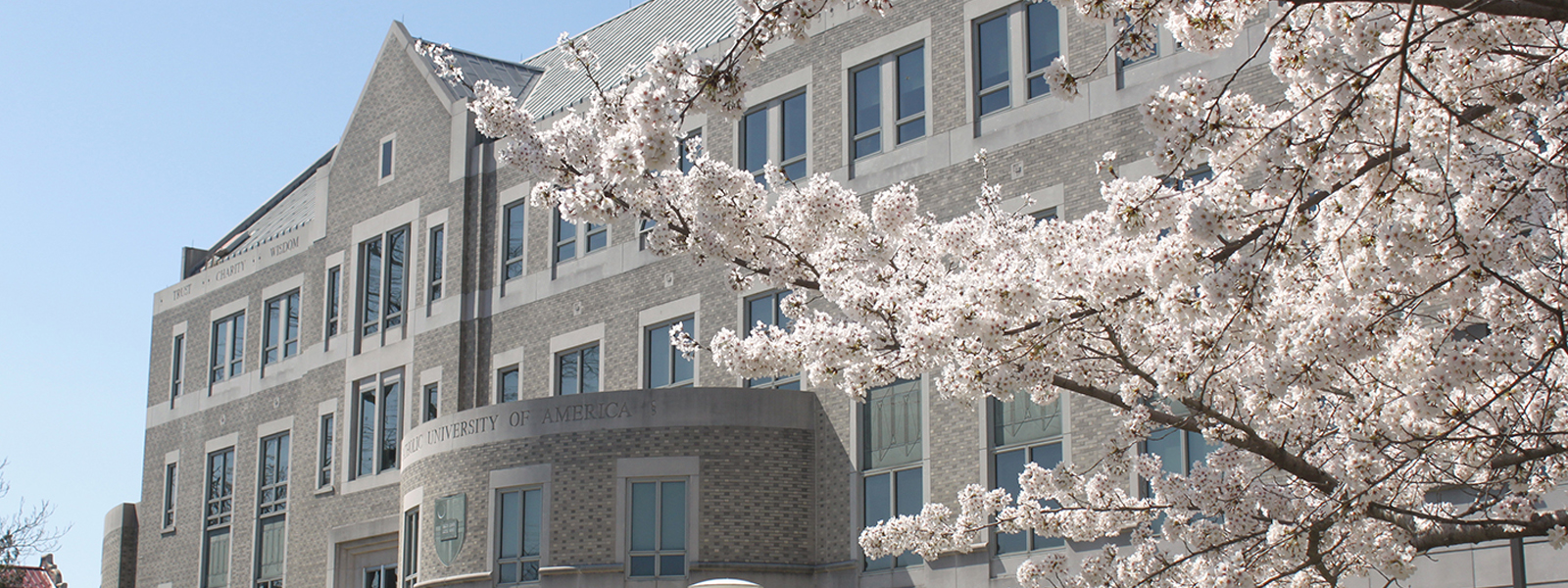 Law School entrance with Cherry Blossoms in bloom